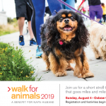 Napa Humane's 8th Annual Walk for Animals