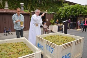 Blessing of the Grapes at Grgich Hills Estate