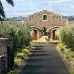 Black Stallion Estate Winery