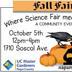 Fall Faire