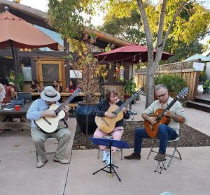 Napa Valley Guitar Orchestra