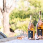 Rosé & Reggae – A Virtual Winery Experience